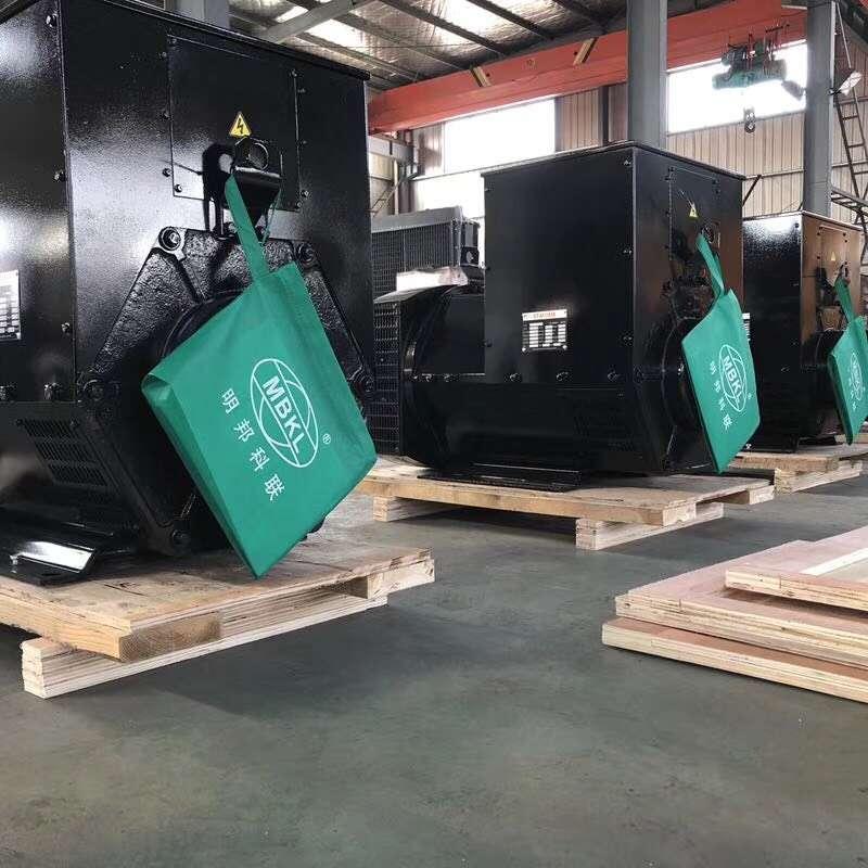 湖南东阳地产公司安装明邦250KW玉柴发电机一台