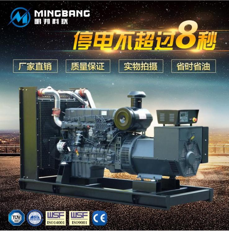 岳阳佳鼎房地产在明邦购买300kw上柴发电机一台